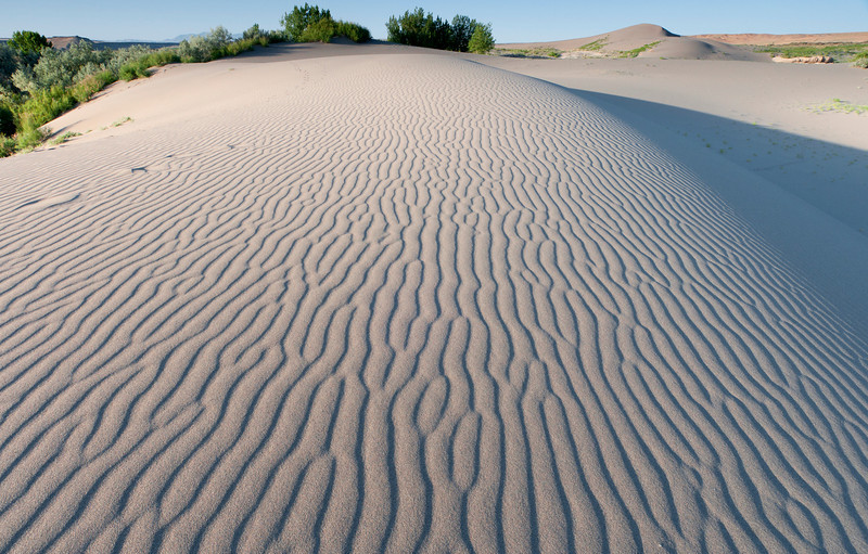 Sculpture of Sand, Bruneau Dunes - Idaho  Migrating streaks of sand cap a white dune at Bruneau; carved by the ever-present wind, constantly changing in pattern shape and length.