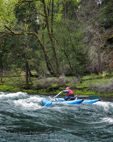 Spring green rafting on Oregon's Illinois river, April 2011.