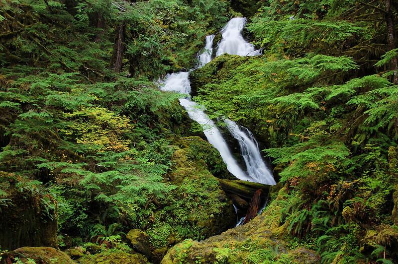 Bunch Creek Falls