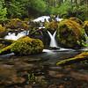 Upper Curly Creek Falls