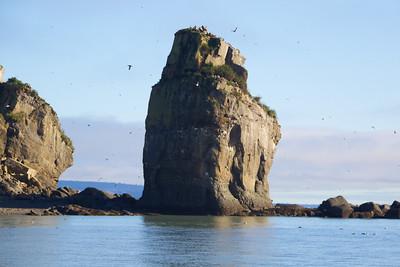 Duck Island - Cook Inlet, Alaska