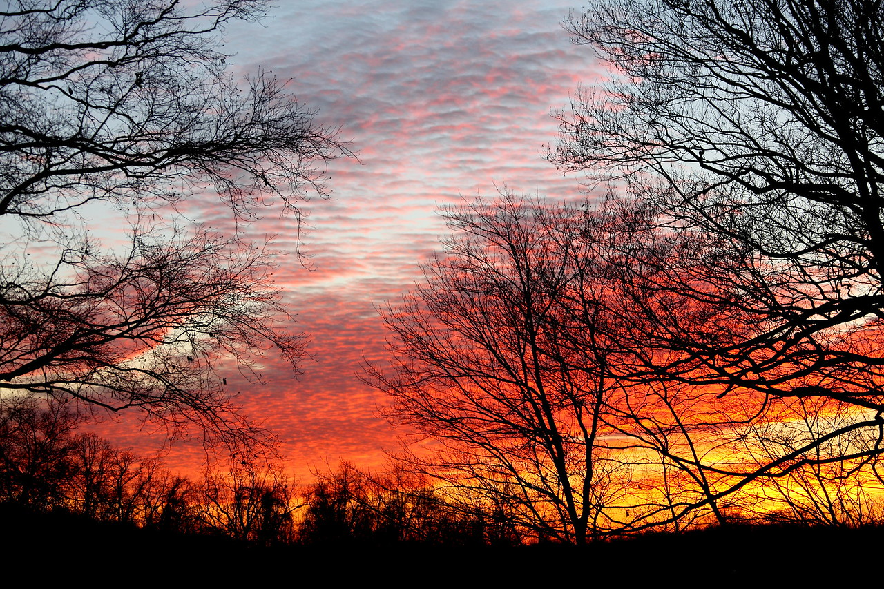 A beautiful winter sunrise in Colts Neck, NJ