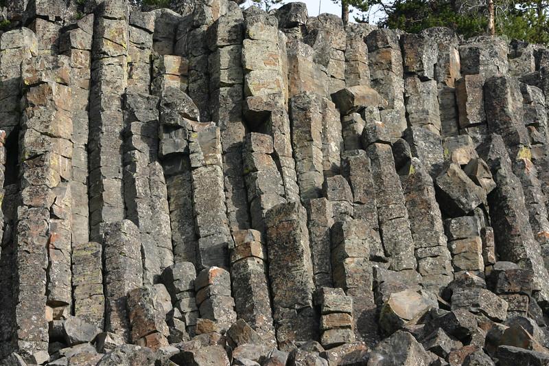 Sheep eater Cliffs, YNP