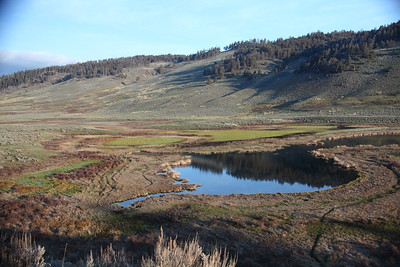 Black Tail Pond. Yellowstone Park, near Lamar Valley.