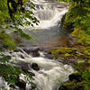Sweet Creek Whitewater