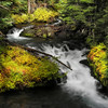 Fall Creek Autumn