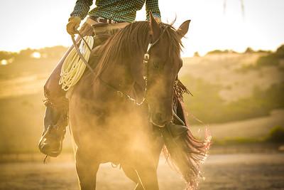 Cowgirl Tricks