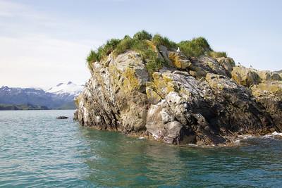 Kittiwake Island - Kukak Bay off the coast of Katmai National Park, Alaska