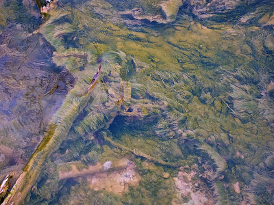 Bacteria growing in the runoff from a geyser. This looks like a painting.