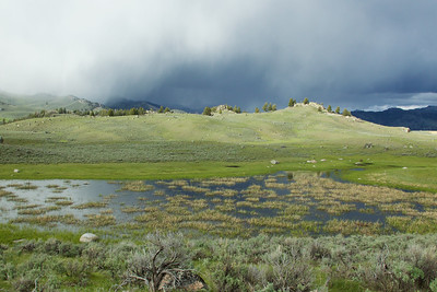 A storm hits Lamar Valley, Yellowstone National Park