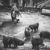 The Untieable Nature of Motherhood<br /> Kun Chang Kian Hmong Village, Chiang Mai, Thailand