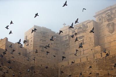 The Golden Fort (Jaisalmer, India)