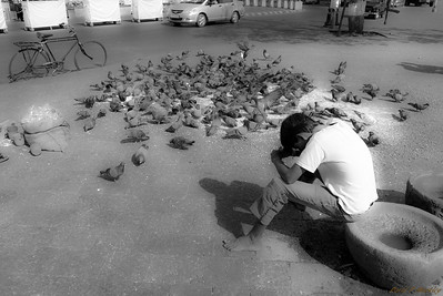 Peaceful Moment