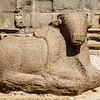 Nandi statue at the Shore Temple complex (Pallava dynasty) in Mamallapuram, Tamil Nadu, South India, Asia