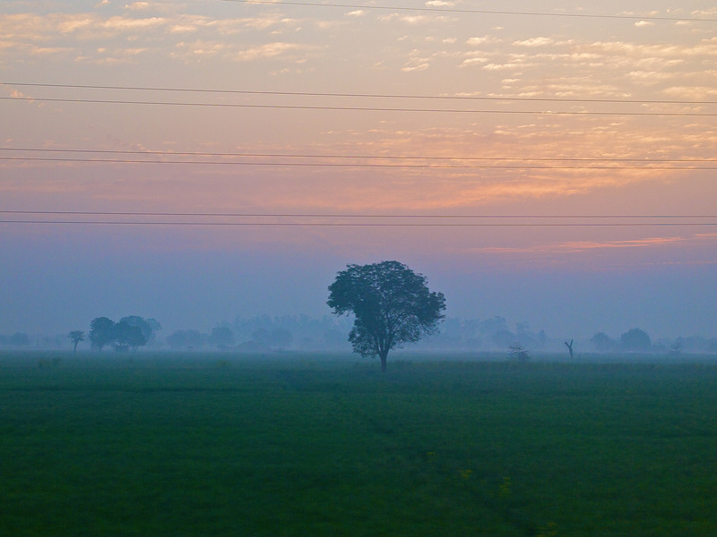 Indian Countryside #2, Shatabdi Express Train - Between Delhi and Agra, India