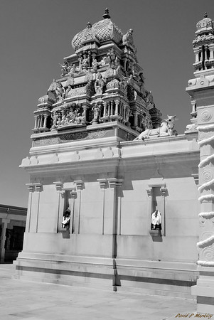 Temple Side