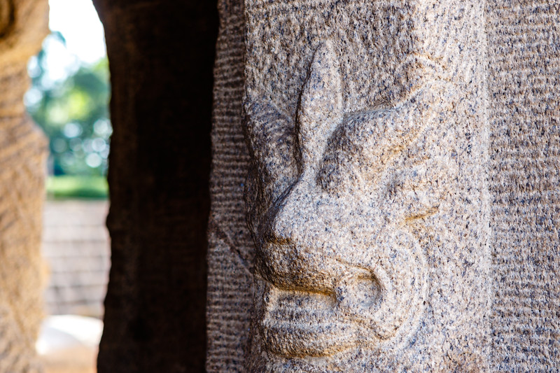 Columns with lion guards of the Bhima Ratha, one of the Pancha Rathas (Five Rathas) of Mamallapuram, an Unesco World Heritage Site in Tamil Nadu, South India, Asia