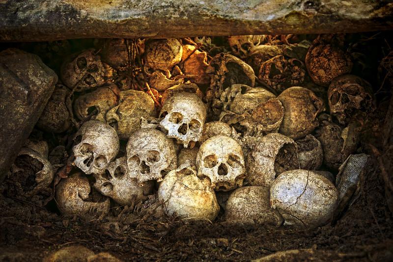 #IN015 Skulls