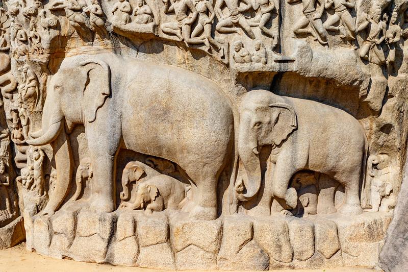 Arjuna's Penance in  Mamallapuram, an Unesco World Heritage Site in Tamil Nadu, South India, Asia