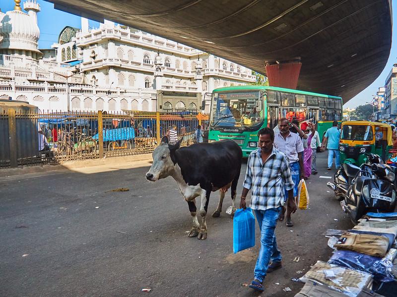 Central Bangalore - Bangalore, India