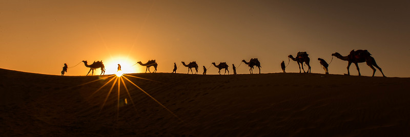 The Caravan (Thar Desert, India)
