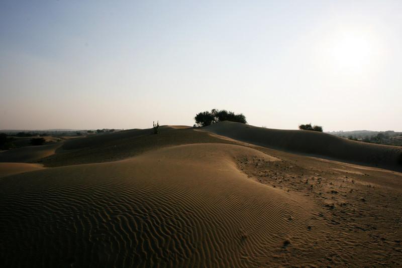 THAR DESERT. KHARI. RAJASTHAN. SAND DUNES.