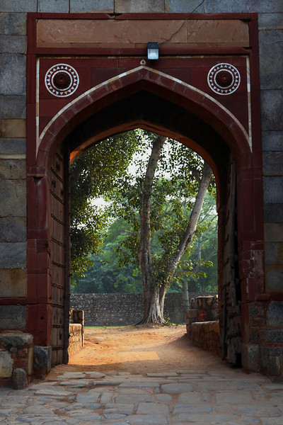 DELHI. HUMAYUN'S TOMB. ENTRANCE GATE WITH A TREE.