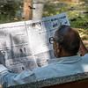 PONDICHERRY. TAMIL NADU. INDIAN MAN READING THE NEWSPAPER IN THE PARK.