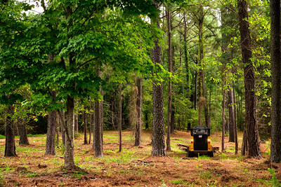 Cat Skid Steer moving logs in North Carolina