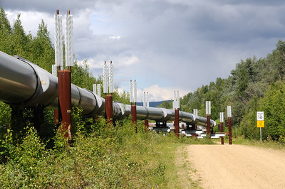 Trans Alaska Oil Pipeline with Permafrost Stabilizing Heat Exchangers