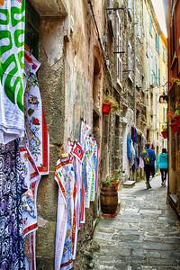 Corniglia Alleyway...