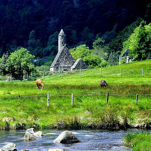 Forty shades of green at Glendalough.
