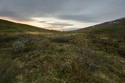 Egilsstaðir #3