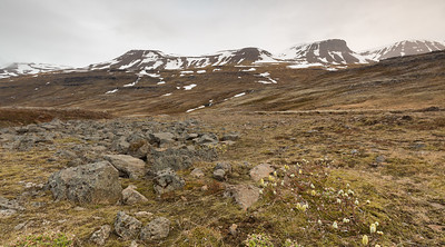 Somewhere In Iceland #10