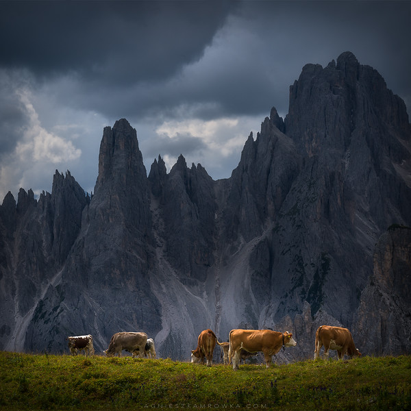 The perfect weather in the Dolomites
