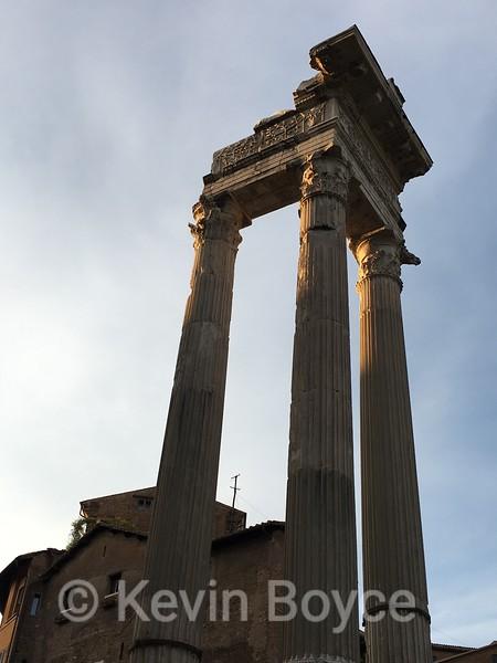 Columns of the Roman Forum