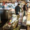 TOKYO. CHUO. TSUKIJI FISH MARKET. TUNA.
