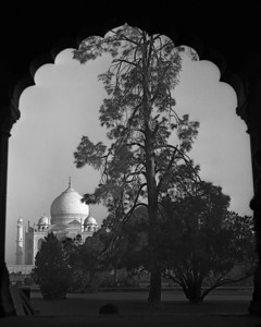 Taj Mahal - Agra India  Kentucky Photography, John Lynner Peterson, Lexington