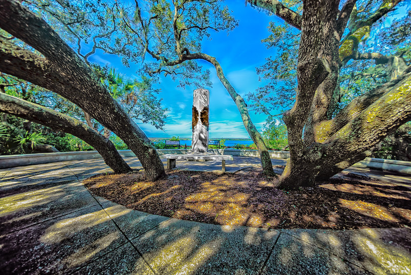 Ribault Monument and Live Oaks