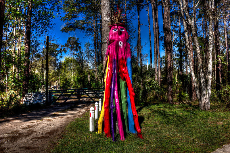 The Girvin Road Tree Monster. The subject of a children's book. Painted my the owner differently throughout the year for breast cancer and other events. The owners operate a tree trimming service and are quite good by the way but this is there only sign for years.