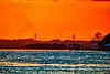 Dames Point Bridge Sunset
