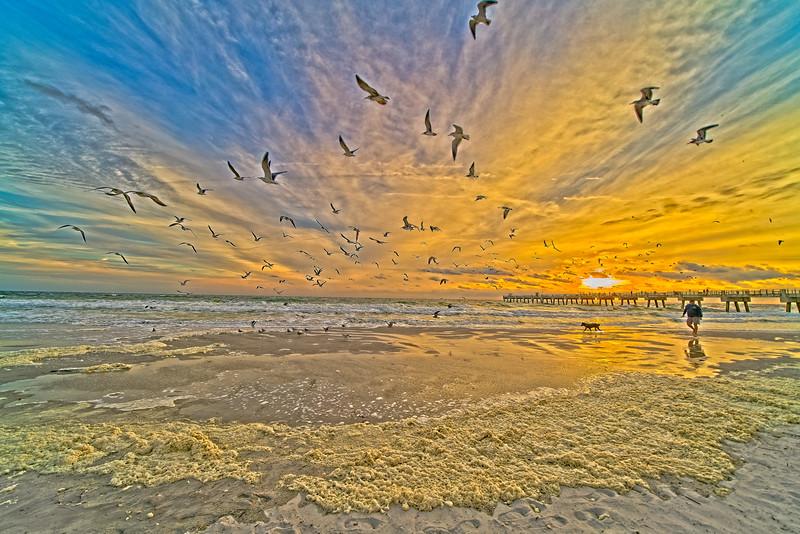 Morning Beach Walk at Sunrise