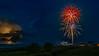 Fireworks Red Poppy Flower