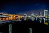 Jacksonville Florida Night Reflections