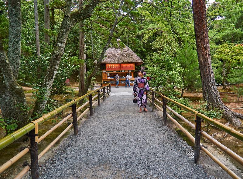 Wooded Path, Kinkakuji - Kyoto, Japan