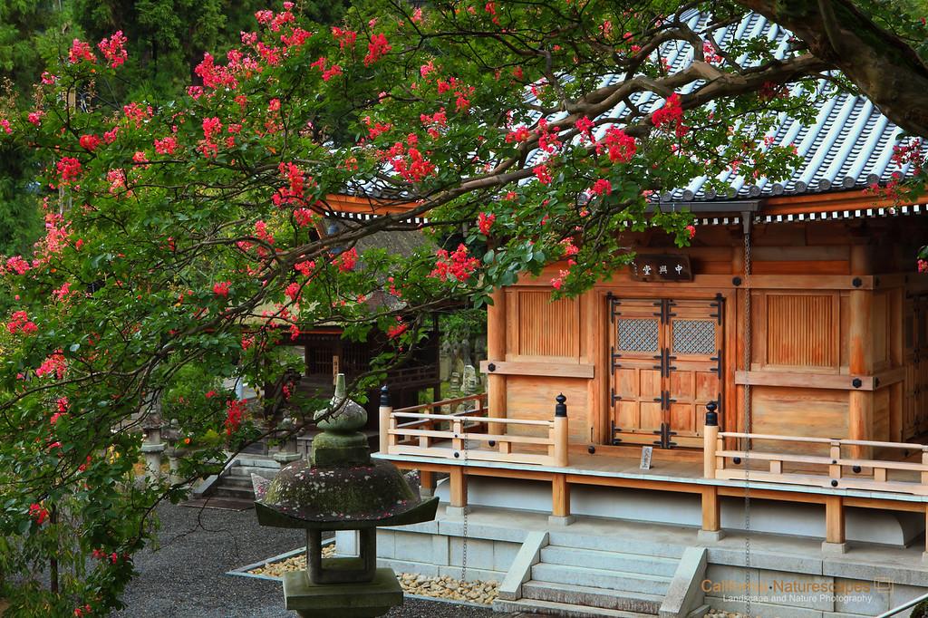 Temples of Kiyomizu-dera