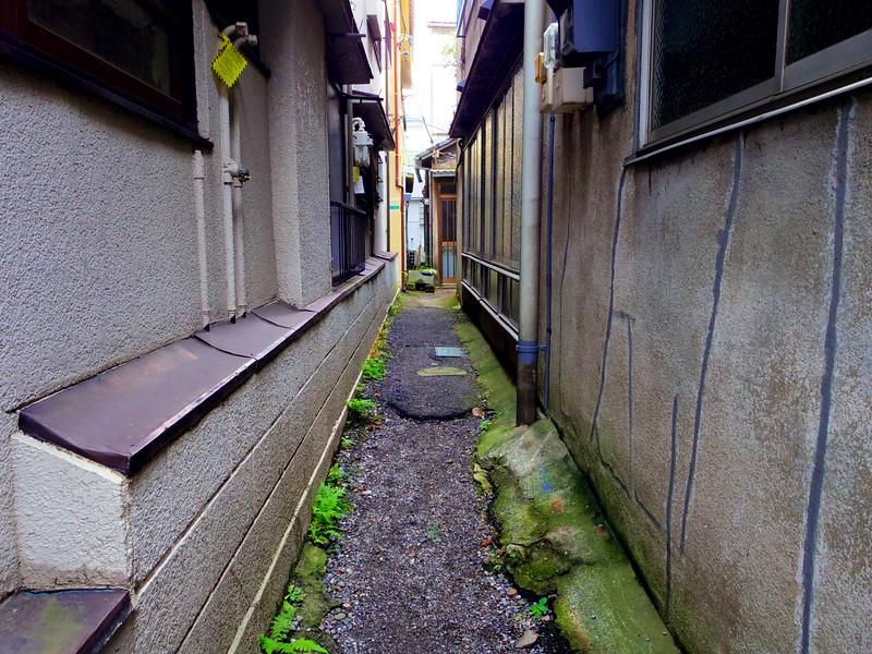 Mossy Alleyway - Tokyo, Japan