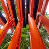 Torii, Fushimi Inari-taisha - Kyoto, Japan