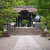 Traditional Temple Gate - Kyoto, Japan
