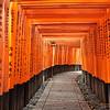 Torii Gates at Fushimi Inari